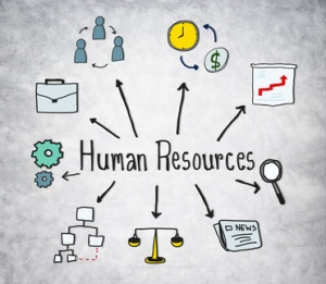 HR - business functions, business operations, business processes